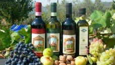 Toscane - wijn en olijfolie